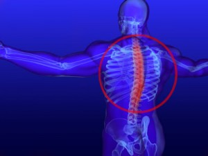The thoracic spine is a common area of discomfort.