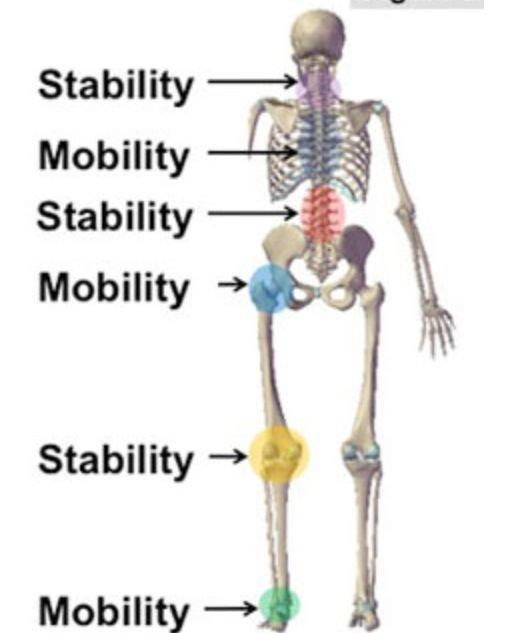 Too Much Stability and Mobility?